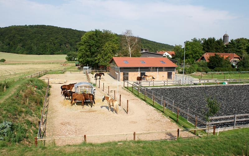 Bewegungsstall Nähe Göttingen