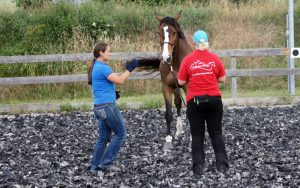 Training bei Vivian Gabor